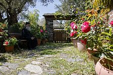 Притча о мудром афонском старце