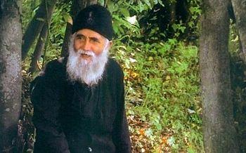 Святой Паисий о том, почему дикие животные не трогают святых