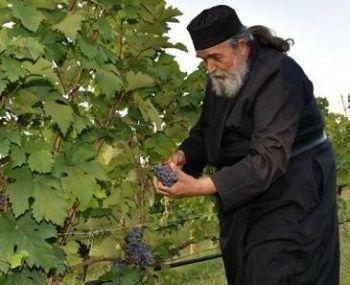 Уникальный случай: святогорский монах - винодел