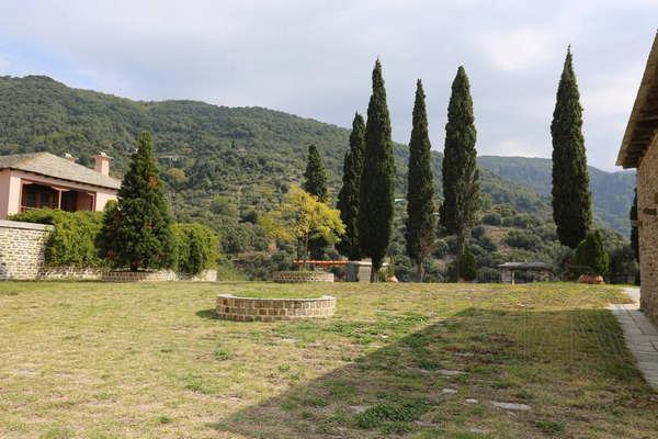 Кипарисы на территории монастыря Ксиропотам